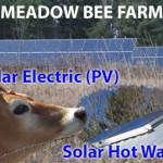 Meadows-Bee-Farm-2