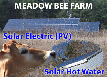 Meadows-Bee-Farm